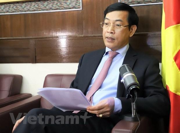 Vietnam, China's Hong Kong enjoy fruitful cooperation: Diplomat hinh anh 1