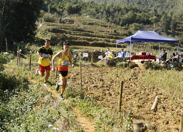 Domestic runners triumph at Vietnam Mountain Marathon 2020 hinh anh 1