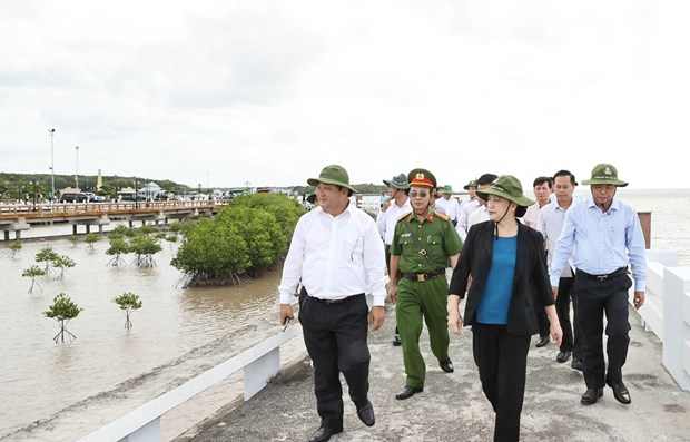 Coastal erosion prevention an urgent task: NA Chairwoman hinh anh 1