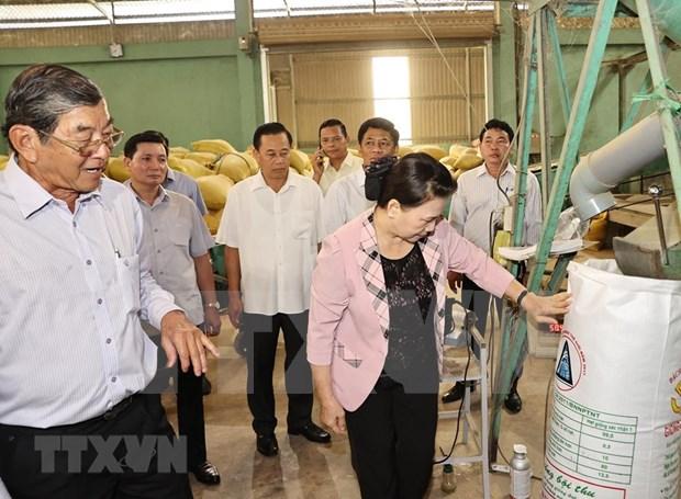 Top legislator visits Soc Trang province hinh anh 1