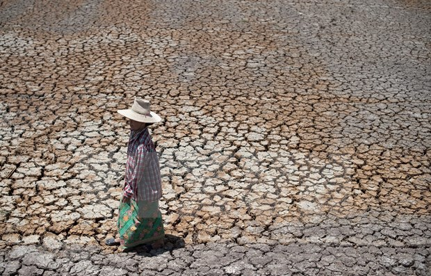 Building resilience to drought in Southeast Asia hinh anh 1