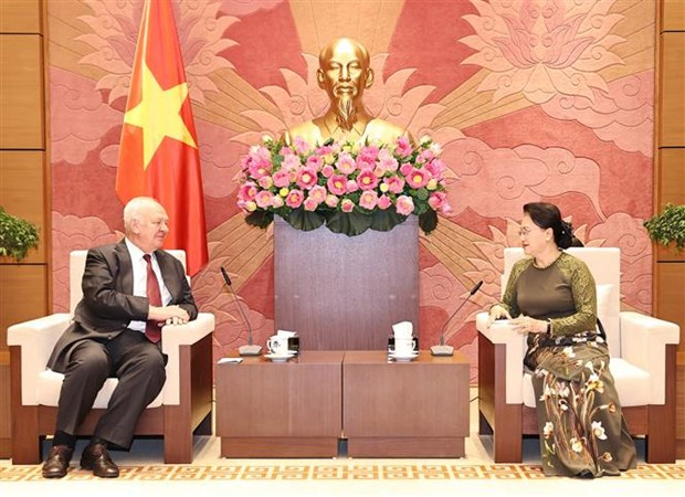 Vietnam-Russia parliamentary ties enjoy positive progress: top legislator hinh anh 1