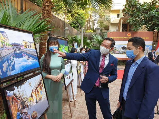 Vietnamese culture promoted in Egypt hinh anh 1