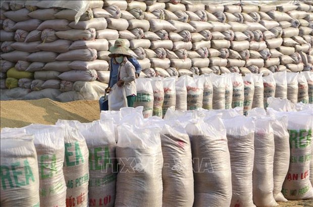 Vietnam provides Laos with 1,000 tonnes of rice for people hit by flooding hinh anh 1