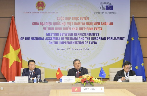 Vietnamese NA, EP discuss EVFTA implementation hinh anh 1