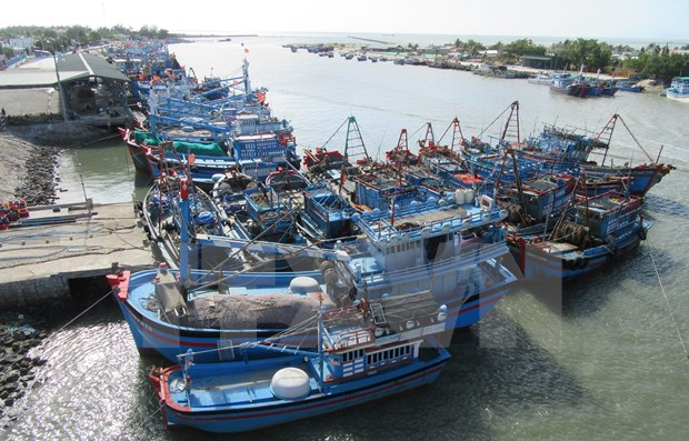 Staff shortages causing problems in supervising fishing vessels: anti-IUU fishing conference hinh anh 1