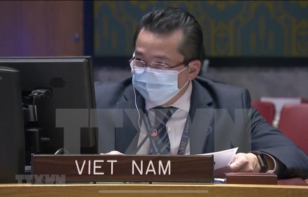 Vietnam shares concerns over persistent insecurity in Congo hinh anh 1