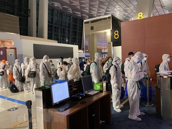 Nearly 350 citizens brought home from UAE, India hinh anh 1