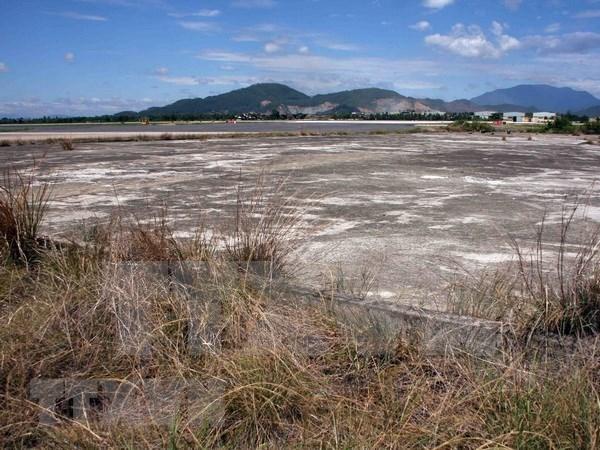 Soil washing effective for dioxin contaminated land: Seminar hinh anh 1