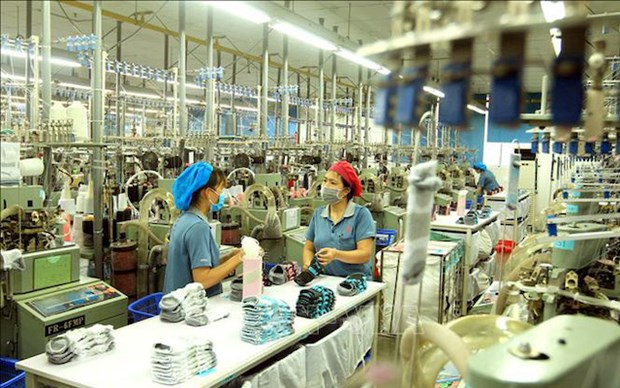 Vietnam to have 12 ecosystems with revenue of 100 billion USD: McKinsey hinh anh 1