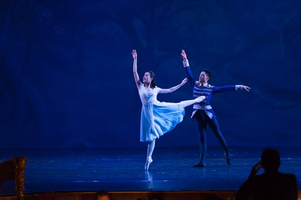 The Nutcracker ballet starts Christmas season in HCM City hinh anh 1