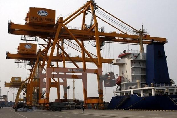 Fine logistics services facilitate Vietnam-EU trade: experts hinh anh 1