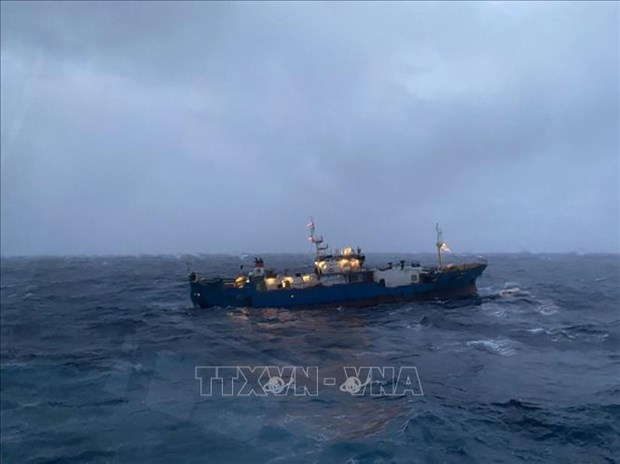 Disabled Russian cargo vessel towed ashore by Vietnamese navy hinh anh 1