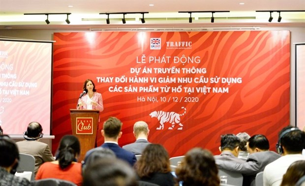 Initiative launched to drive down tiger product consumption hinh anh 1