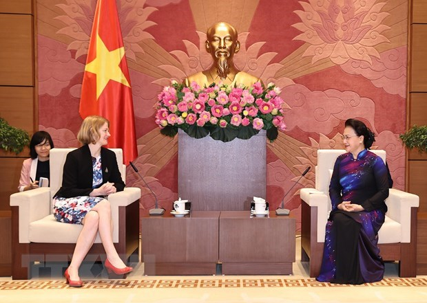 NA leader receives Ambassadors of New Zealand, Chile, Indonesia hinh anh 1