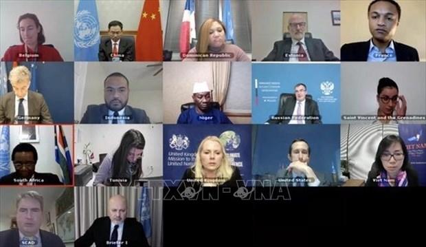 Vietnam welcomes UNITAD's investigation achievements despite COVID-19 hinh anh 1