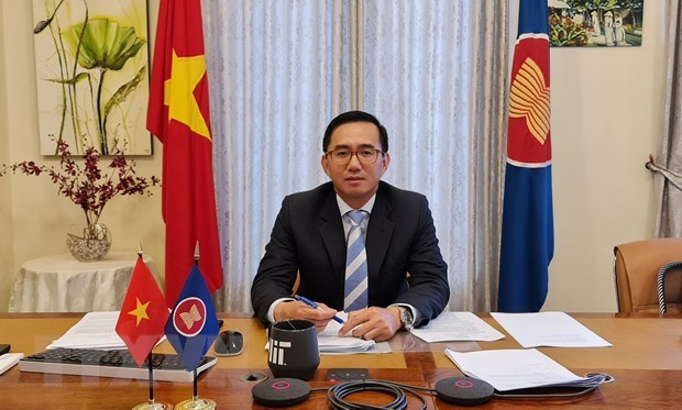 Vietnam leaves deep imprint on ASEAN's 2020 cooperation: Ambassador hinh anh 1