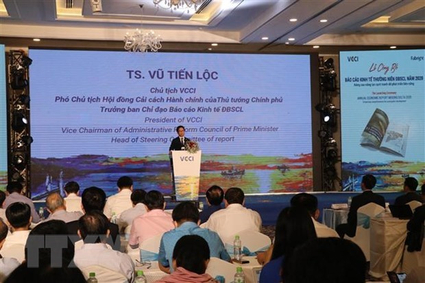First Mekong Delta Economic Report debuts hinh anh 1