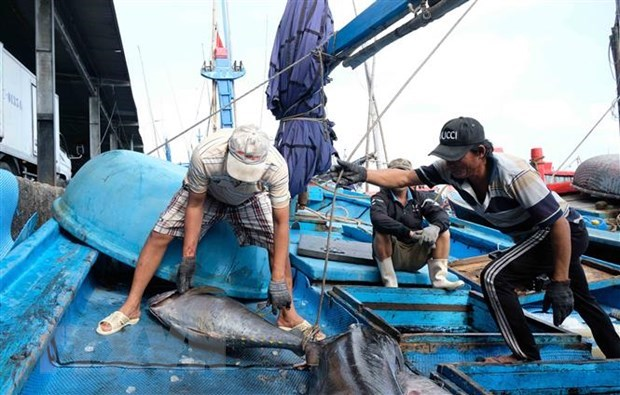 Conservation significant to fisheries resources development: official hinh anh 1