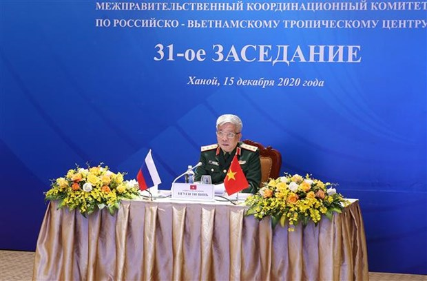 Coordinating Committee for Vietnam-Russia Tropical Centre convenes 31st meeting hinh anh 1