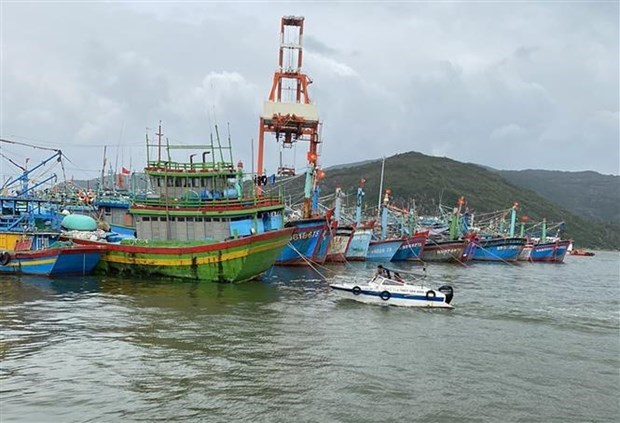 ASEAN maritime cooperation reaps fruits amidst COVID-19 hinh anh 1