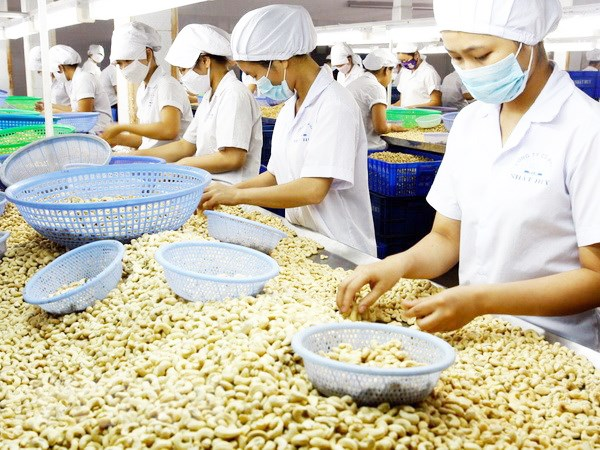 Vietnam's agriculture needs support from foreign partners: MARD hinh anh 1