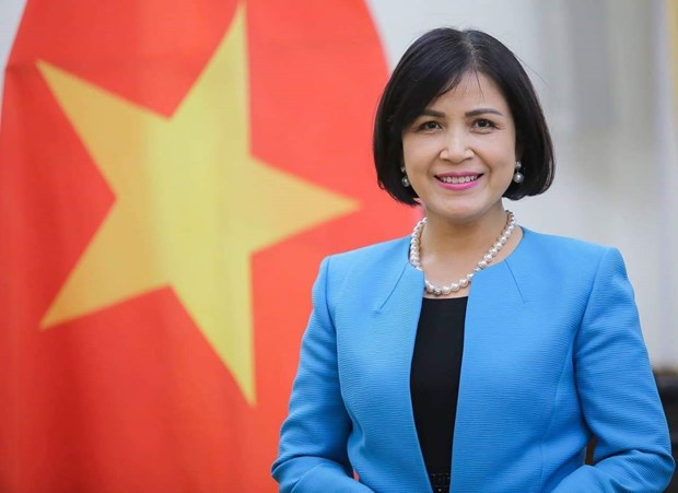 Vietnam chairs meeting of ASEAN Committee in Geneva hinh anh 1