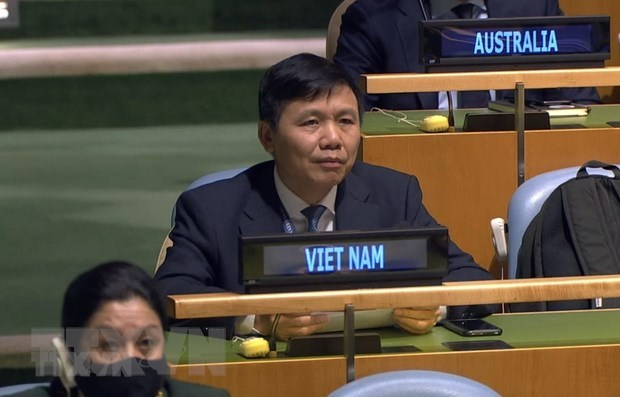 Int'l community's assistance important to Syria: Ambassador hinh anh 1