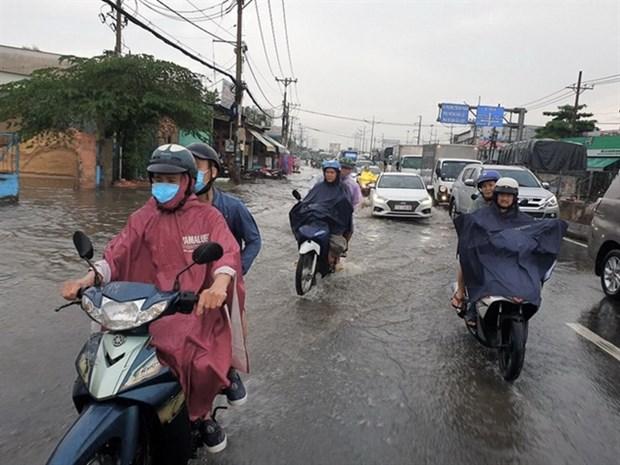 HCM City drafts 10-year climate change response plan hinh anh 1