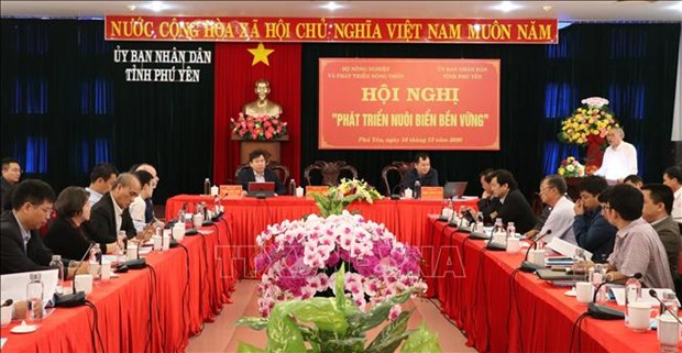 Seaculture needs sustainable measures to thrive: experts hinh anh 1