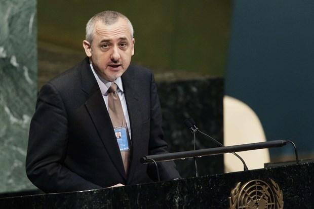 Vietnam wins trust worldwide: Belgian Ambassador to UN hinh anh 1