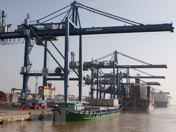 Cargo via Vietnam's seaports up 4 percent in 2020 hinh anh 1