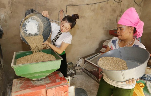 UNDP project aims to accelerate socio-economic development in ethnic minority areas hinh anh 1