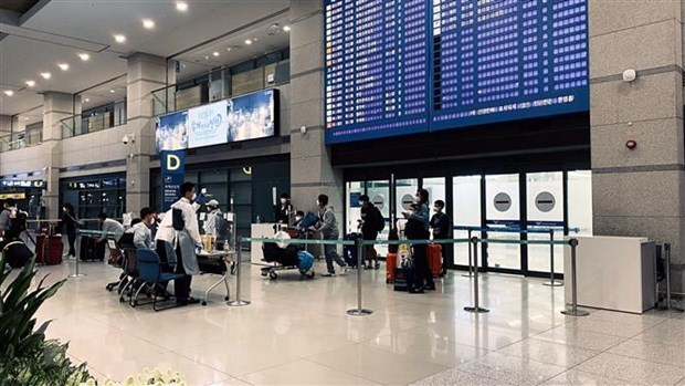 More Vietnamese citizens brought home from RoK, Japan hinh anh 1