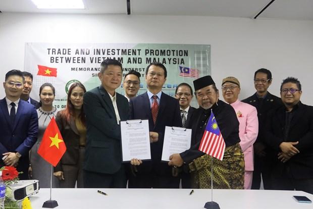 Vietnamese, Malaysian enterprises boost cooperation hinh anh 1