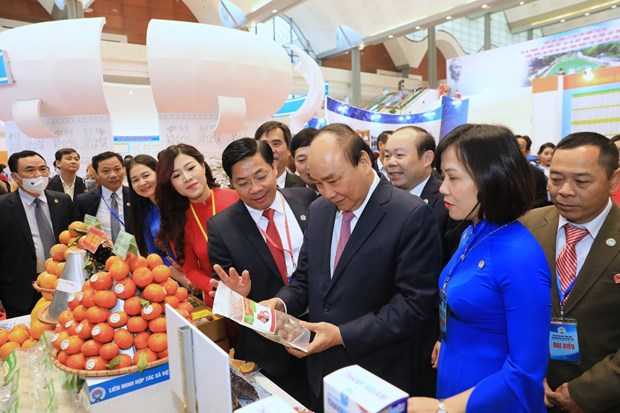 Collective economy must be developed in line with market economy rules: PM hinh anh 2