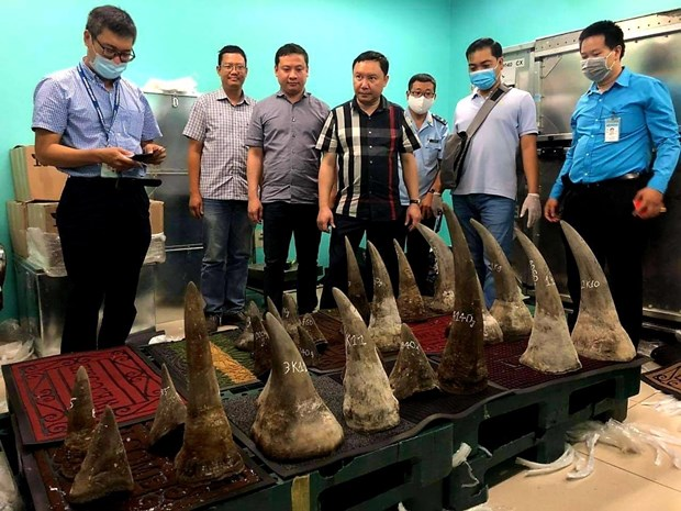 Over 90kg of suspected rhino horns seized at Tan Son Nhat airport hinh anh 1