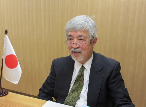 Vietnam excellent as ASEAN Chair despite pandemic: Japanese expert hinh anh 1