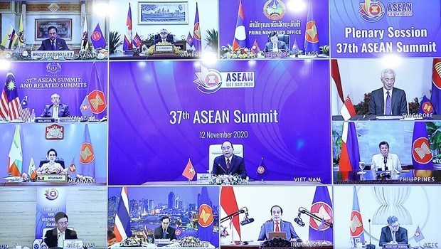 Diplomatic efforts affirm Vietnam's position in international arena amid COVID-19 hinh anh 3