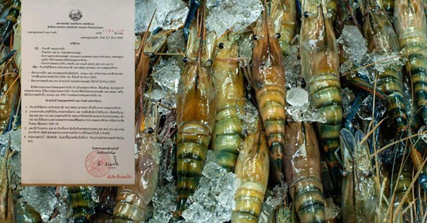 Laos bans imports of Thai seafood due to COVID-19 outbreak hinh anh 1