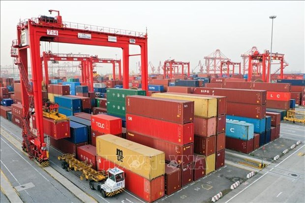 Trade between ASEAN, China's Shanghai remains strong despite pandemic hinh anh 1