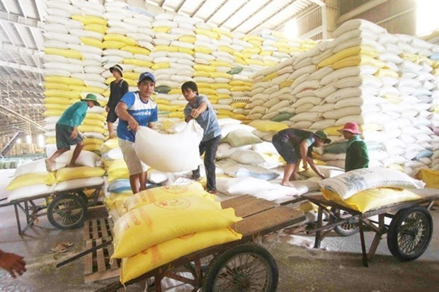 Rice farmers benefit from emissions reduction programme hinh anh 1
