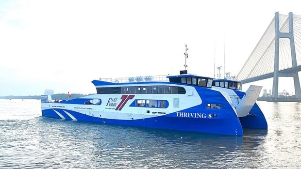 Can Gio-Vung Tau ferry service to start operation next year hinh anh 1