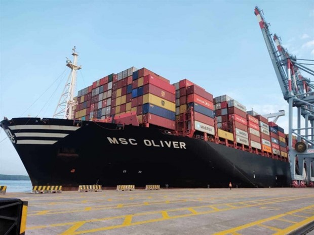 Cai Mep Int'l Terminal receives massive container ship hinh anh 1