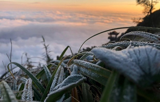 Severe cold spell hits northern, central regions hinh anh 1