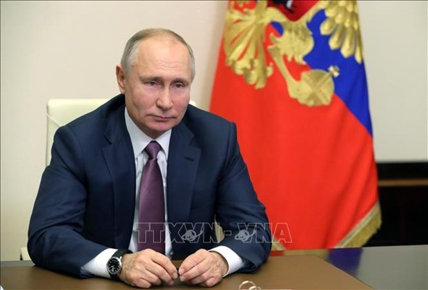 Russian President extends New Year greetings to Vietnam hinh anh 1