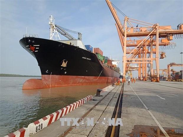 Vietnam prioritises development of key seaports hinh anh 1