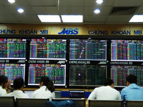Stock market hits records in COVID-19 year on rising optimism hinh anh 2