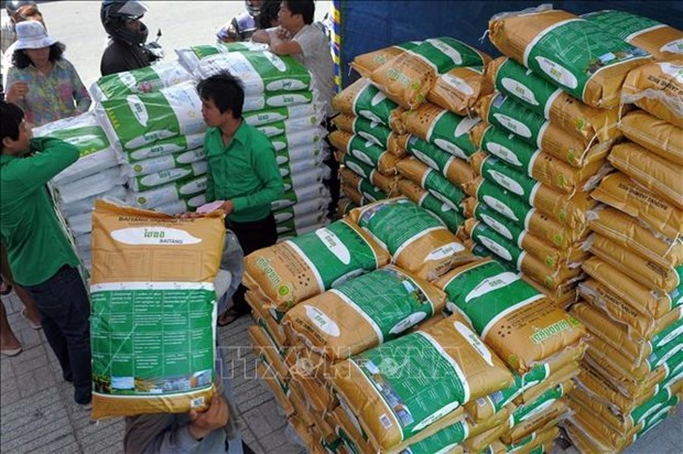 Cambodia's rice exports surge 11 percent in 2020 hinh anh 1