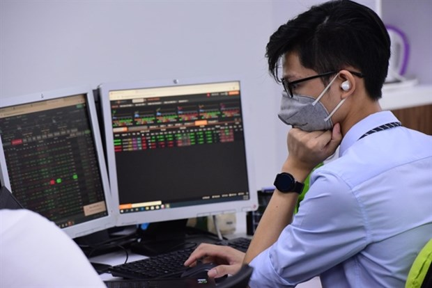 Experts hope for brighter market outlook after remarkable year hinh anh 1